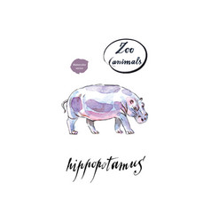 the common hippopotamus in watercolor vector image