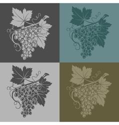 With grapes and leaves on a vector