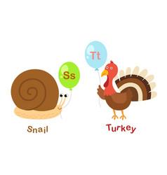 isolated alphabet letter s-snailt-turkey vector image vector image