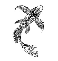 big koi fish with beautiful tail and body vector image