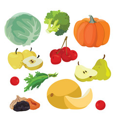 cabbage pumpkin broccoli melon greens cherry vector image