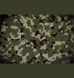 camouflage pattern background military camouflage vector image