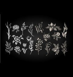 floral set graphic collection with white leaves vector image