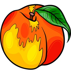 Peach fruit cartoon vector