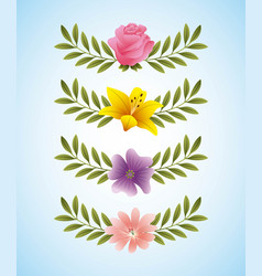 rose hibiscus periwinkle delicate flowers and vector image