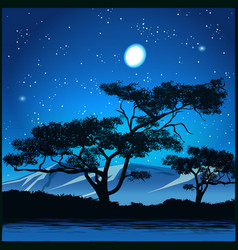 Trees at starry night vector