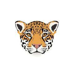 abstract color jaguar head vector image vector image