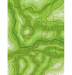 topographical map vector image vector image