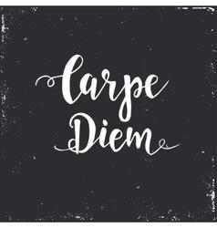 Carpe diem - latin phrase means capture the moment vector