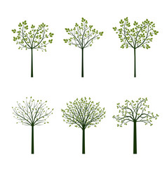 green trees and roots vector image