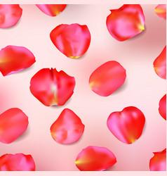 red rose petals realistic vector image