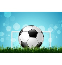Soccer Ball in Green Grass vector