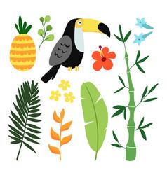 summer tropical graphic elements toucan bird vector image vector image