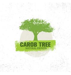 Carob tree natural sweets organic food vector