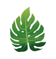 green textured leaf icon image vector image