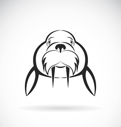 Image of Sea lion design on white background vector