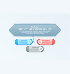 infographics template with 3 structure elements vector image