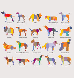 Set colorful mosaic dogs silhouettes-2 vector