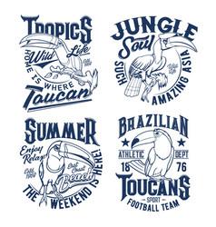 Tshirt prints with toucan apparel mascots vector