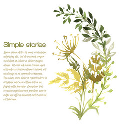 watercolor herbs and flowers background vector image