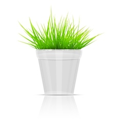 White Flowerpot With Green Grass vector