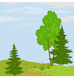 landscape trees on hill vector image vector image