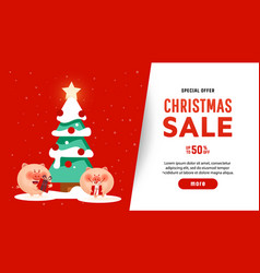 beautiful christmas poster with tree pigs vector image
