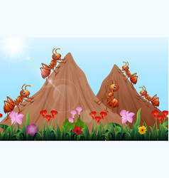 cartoon ants colony with ant hill vector image