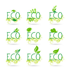 Eco friendly organic natural bio product web icon vector