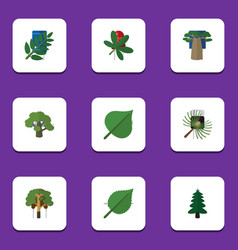 flat icon ecology set of maple tree park and vector image