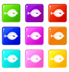 Flounder icons 9 set vector