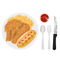 fried chicken french fries and hot dog sausage vector image
