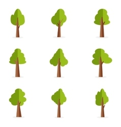 Green trees of set collection vector