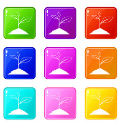 Growing plant set 9 vector