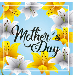 mothers day greeting card with lilies and blooming vector image