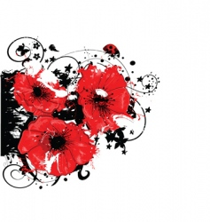 abstract poppy vector image