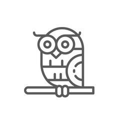 Bird owl line icon vector