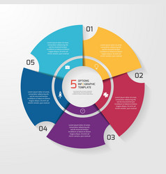 circle infographic 5 options vector image