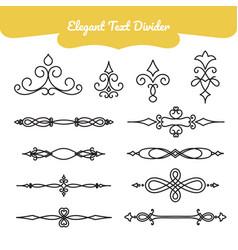 elegant text divider vector image