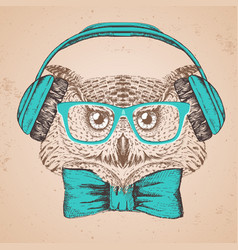 hipster bird owl hand drawing muzzle of bird owl vector image