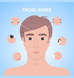 Man face with wrinkles medical cosmetic anti-aging vector