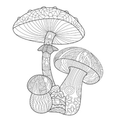 Mushroom coloring for adults vector image