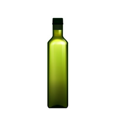 olive oil organic product blank bottle vector image