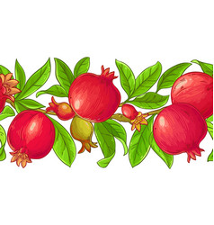 Pomegranate branches pattern vector
