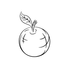 Hand drawn apple sketches vector