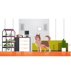 Automatic digital pet dry food storage throwing vector