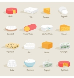 Cheese Icon Flat vector