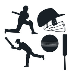 crickets equipment elements vector image