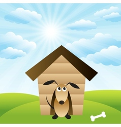 Dog in house on green grass field vector image