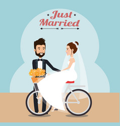 Just married couple in bicycle avatars characters vector